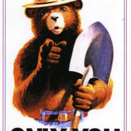Only YOU Can Prevent FOOLISH Fires!!